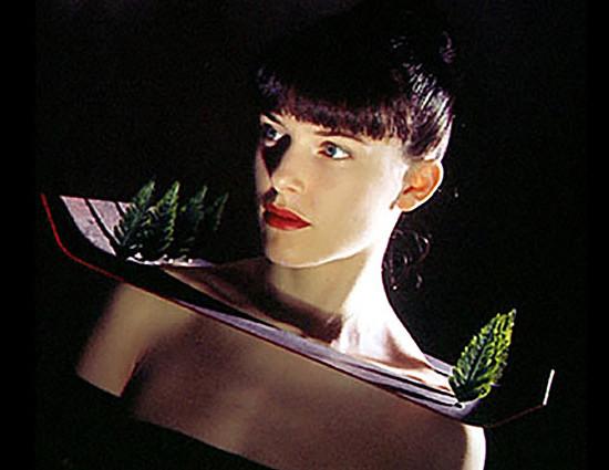 ColaremaluminioPapelePlastico_1989_capa
